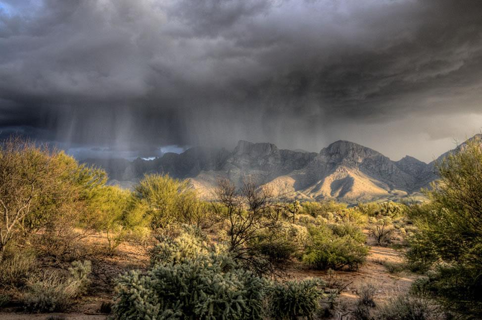 Heavy Rains Dust Management
